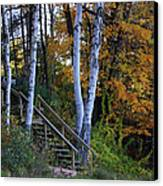 Stairway To Fall Canvas Print by Kathy DesJardins