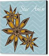 Star Anise Art Canvas Print by Christy Beckwith