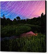 Star Lines And Fireflies Canvas Print