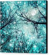 Star Night Canvas Print by William Schmid