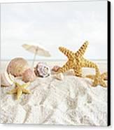 Starfish And Seashells  At The Beach Canvas Print by Sandra Cunningham