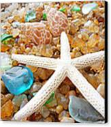 Starfish Art Prints Shells Agates Coastal Beach Canvas Print by Baslee Troutman