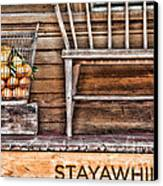 Stayawhile Canvas Print by Diana Sainz