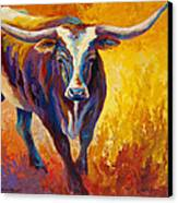 Stepping Out - Longhorn Canvas Print by Marion Rose