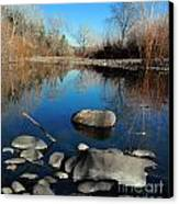 Stick In The Mud Canvas Print by David Taylor