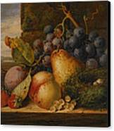 Still Life Grapes Pares Birds Nest Canvas Print by Edward Ladell