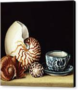 Still Life With Nautilus Canvas Print by Jenny Barron