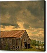 Still Standing Canvas Print by Alana Ranney