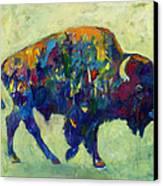 Still Wild Canvas Print by Kate Dardine