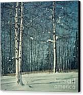Still Winter Canvas Print by Priska Wettstein