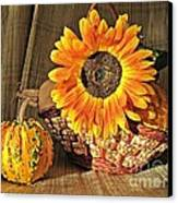 Stillife With  The Sunflower And Pumpkins Canvas Print by Halyna  Yarova