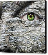 Stone Face Canvas Print by Semmick Photo