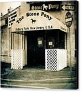 Stone Pony Canvas Print by Colleen Kammerer