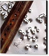 Stop Sign Bullet Holes Canvas Print