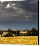 Storm Brewing Over Corn Canvas Print by Matthew Bruce