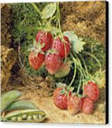 Strawberries And Peas Canvas Print by John Sherrin