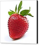 Strawberry On White Background Canvas Print by Elena Elisseeva