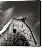 Strength Of Character Canvas Print by Tanya Jacobson-Smith