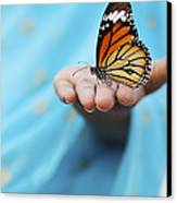 Striped Tiger Butterfly Canvas Print