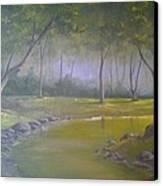 Study In Green Canvas Print by Darren Boysha