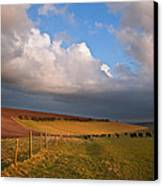 Stunning Scene Across Escarpment Countryside Landscape With Bea Canvas Print by Matthew Gibson