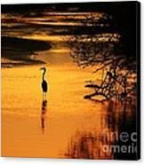 Sublime Silhouette Canvas Print