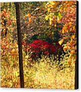 Sumac Treasure Canvas Print by James Hammen