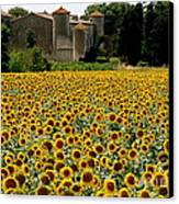 Summer Bliss Canvas Print by France  Art