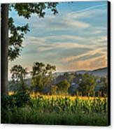 Summer Corn Square Canvas Print by Bill Wakeley