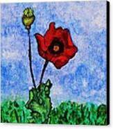 Summer Day Poppy Canvas Print