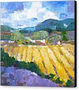 Summer Field 2 Canvas Print by Becky Kim