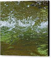 Summer Freshness - Featured 3 Canvas Print