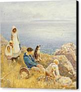 Summer Frolic Canvas Print by Thomas James Lloyd