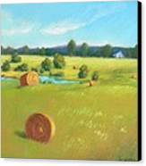 Summer Meadow Canvas Print by Celine  K Yong