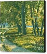 Summer Place Canvas Print by Michael Swanson