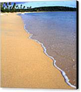 Sun Bay Canvas Print