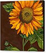 Sunflower Canvas Print by Diane Ferron