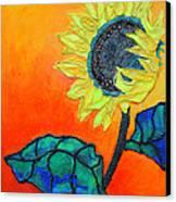 Sunflower Canvas Print by Diane Fine