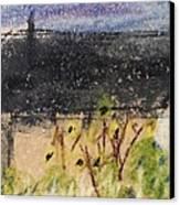 Sunflower Garden Canvas Print by Steve Jorde