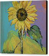 Sunflower Canvas Print by Michael Creese