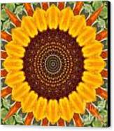 Sunflower Power Canvas Print by Annette Allman