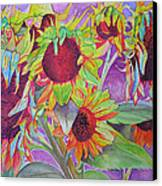 Sunflowers Canvas Print by Joshua Morton