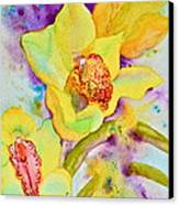 Sunny Splash Of Orchids Canvas Print by Beverley Harper Tinsley
