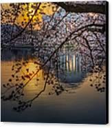 Sunrise At The Thomas Jefferson Memorial Canvas Print by Susan Candelario