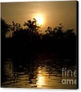 Sunrise In Amazon Canvas Print by Ricardo Lisboa