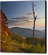 Sunrise In Shenandoah National Park Canvas Print by Pierre Leclerc Photography