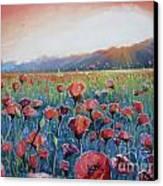 Sunrise Poppies Canvas Print