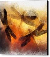 Sunset Dragonflies Canvas Print by Ricky Barnes