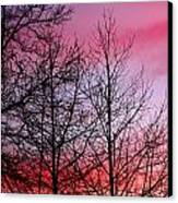 sunset in late February Canvas Print by John Magnet Bell