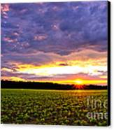 Sunset Over Farmland Canvas Print by Olivier Le Queinec